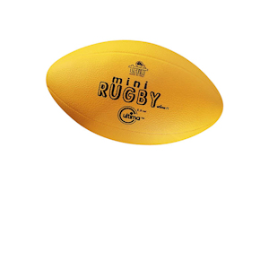 Pallone mini-rugby